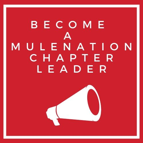 Become a MN Leader icon