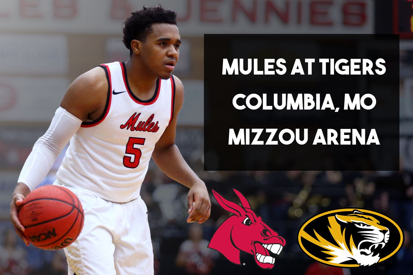 Mules vs. Tigers Header